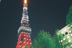 tower-tokyo-tr-laketown