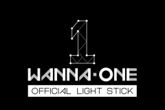 Lightstick Wanna One
