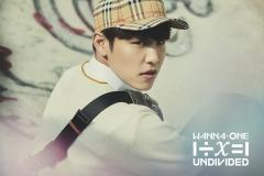 undivided_woojin2