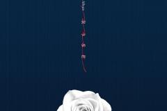 rose-okladka2