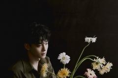 chen_dmd_teaser1
