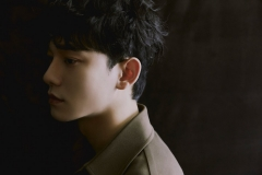 chen_dmd_teaser2