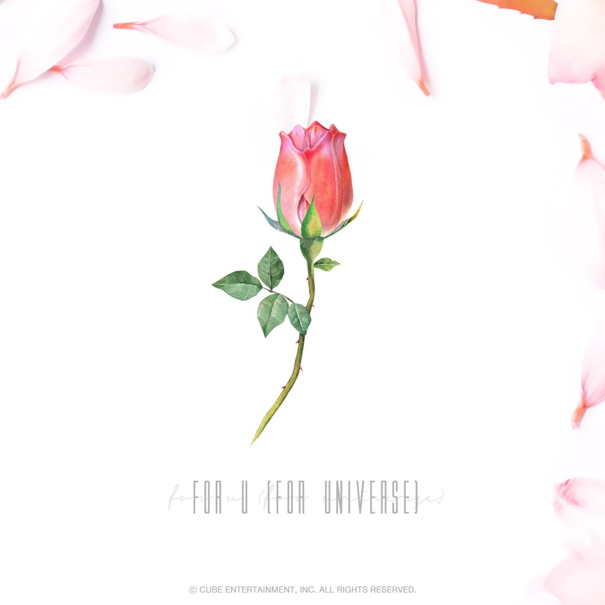 for u_for universe