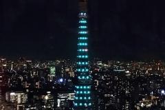 tower-tokyo-13haruharu